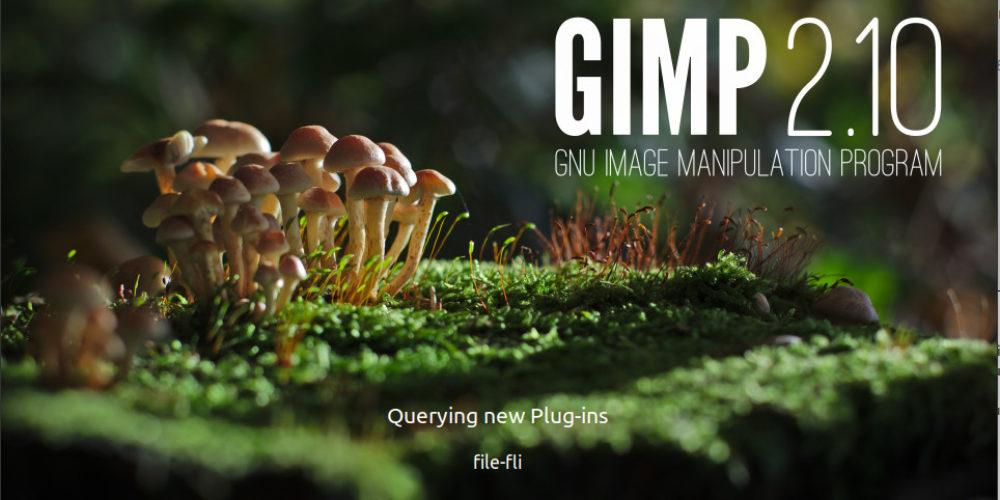 Installare GIMP 2.10 su Ubuntu